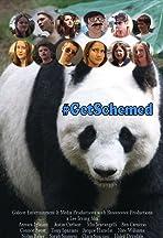#GetSchemed