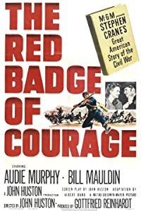 Top 10 movies you must watch The Red Badge of Courage [[480x854]