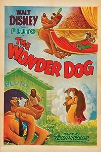 Tous les meilleurs films mp4 vidéo télécharger Pluto acrobate (1950) [480i] [BDRip], Pinto Colvig