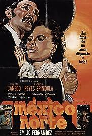 México Norte Poster