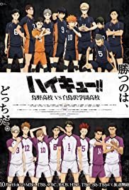 The Volleyball Idiots Poster