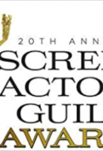 Primary image for 20th Annual Screen Actors Guild Awards