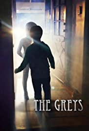The Greys Poster