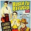 James Cagney, John Derek, and Viveca Lindfors in Run for Cover (1955)