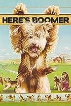 Here's Boomer