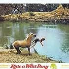 Robert Bettles in Ride a Wild Pony (1975)