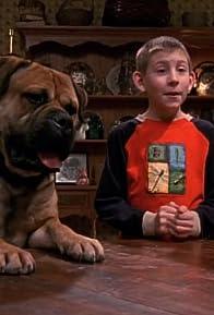 Primary photo for Dewey's Dog