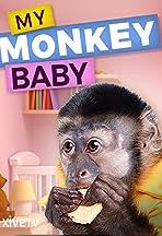 My Monkey Baby