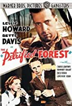 The Petrified Forest: Menace in the Desert