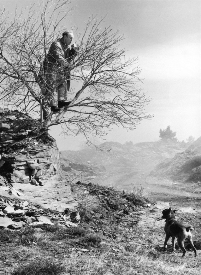 Bourvil in La grande frousse (1964)