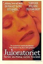 Primary image for Juloratoriet