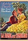 A Lady Without Camelias (1953) Poster