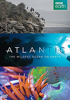 Where to stream Atlantic: The Wildest Ocean on Earth