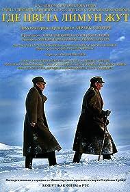 Gde cveta limun zut (2006)