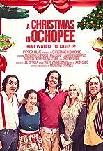 A Christmas in Ochopee