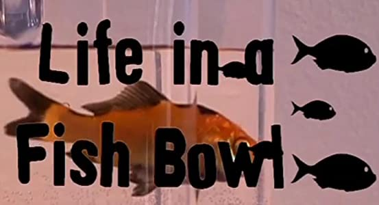 Good downloading movies websites Life in a Fish Bowl by none [mp4]