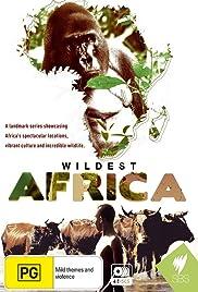 В дебрях Африки 2013