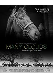 Many Clouds: The People's Horse