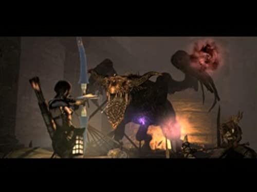 Dragon's Dogma: Dark Arisen (VG)