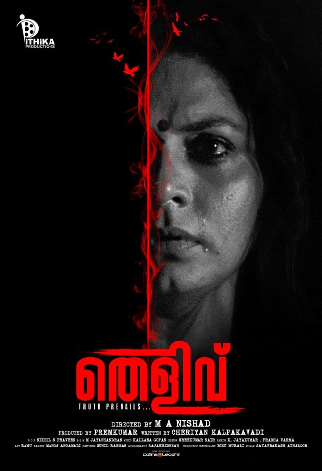 Thelivu 2019 Malayalam 720p HDTVRip 1.3GB Download