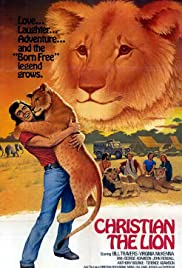 The Lion Who Thought He Was People(1971) Poster - Movie Forum, Cast, Reviews