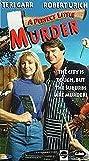 A Quiet Little Neighborhood, a Perfect Little Murder (1990) Poster