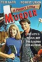 A Quiet Little Neighborhood, a Perfect Little Murder