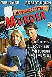 A Quiet Little Neighborhood, a Perfect Little Murder Poster