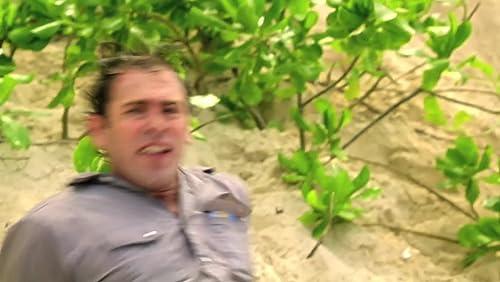 Hawaii Five-0: Na Me'e Laua Na Paio