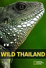 Wild Thailand Poster