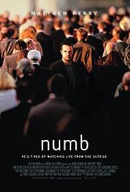 Matthew Perry in Numb (2007)