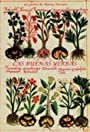 The Good Herbs
