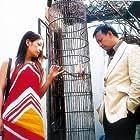 Wen Jiang and Wei Zhao in Lü cha (2003)
