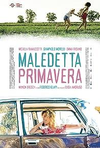 Primary photo for Maledetta primavera