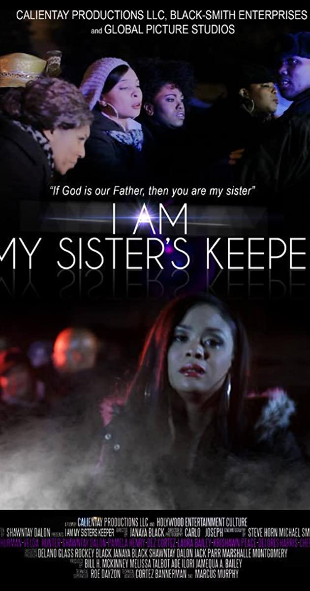Subtitle of I Am My Sister's Keeper