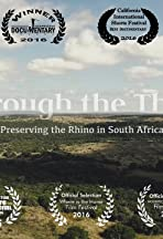Through the Thick: Preserving the Rhino in South Africa