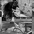 Carla Marlier and Patricia Viterbo in Ces dames s'en mêlent (1965)