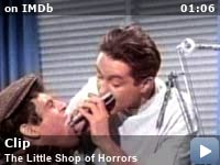 little shop of horrors summary