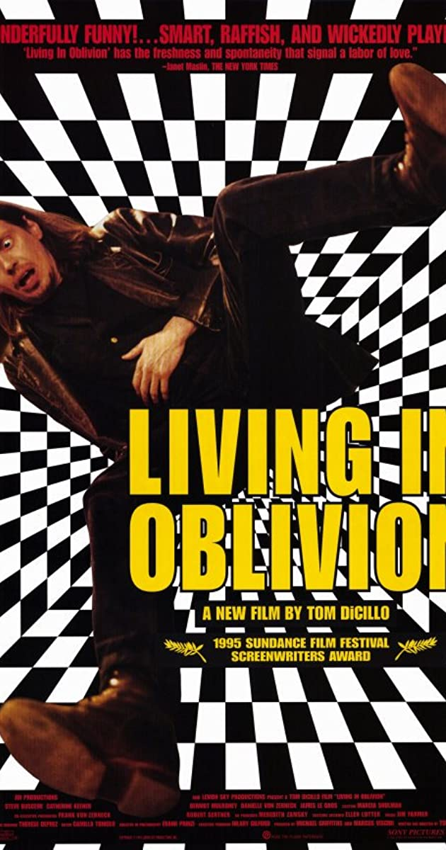 Subtitle of Living in Oblivion
