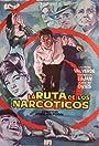 La ruta de los narcóticos