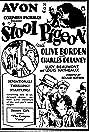 Stool Pigeon (1928) Poster