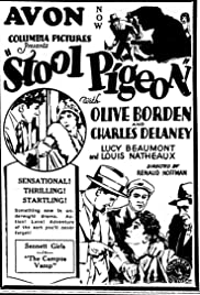 Stool Pigeon Poster