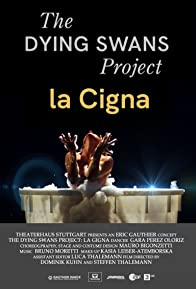 Primary photo for The Dying Swans Project: La Cigna