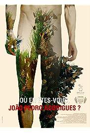 Où en êtes-vous, João Pedro Rodrigues?