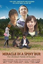 Miracle in Kasama Poster