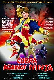 Cobra vs. Ninja (1987)