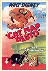 Primary photo for Cat Nap Pluto