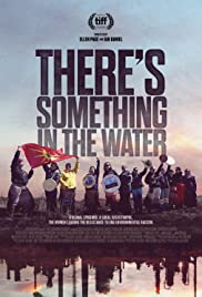 There's Something in the Water Poster