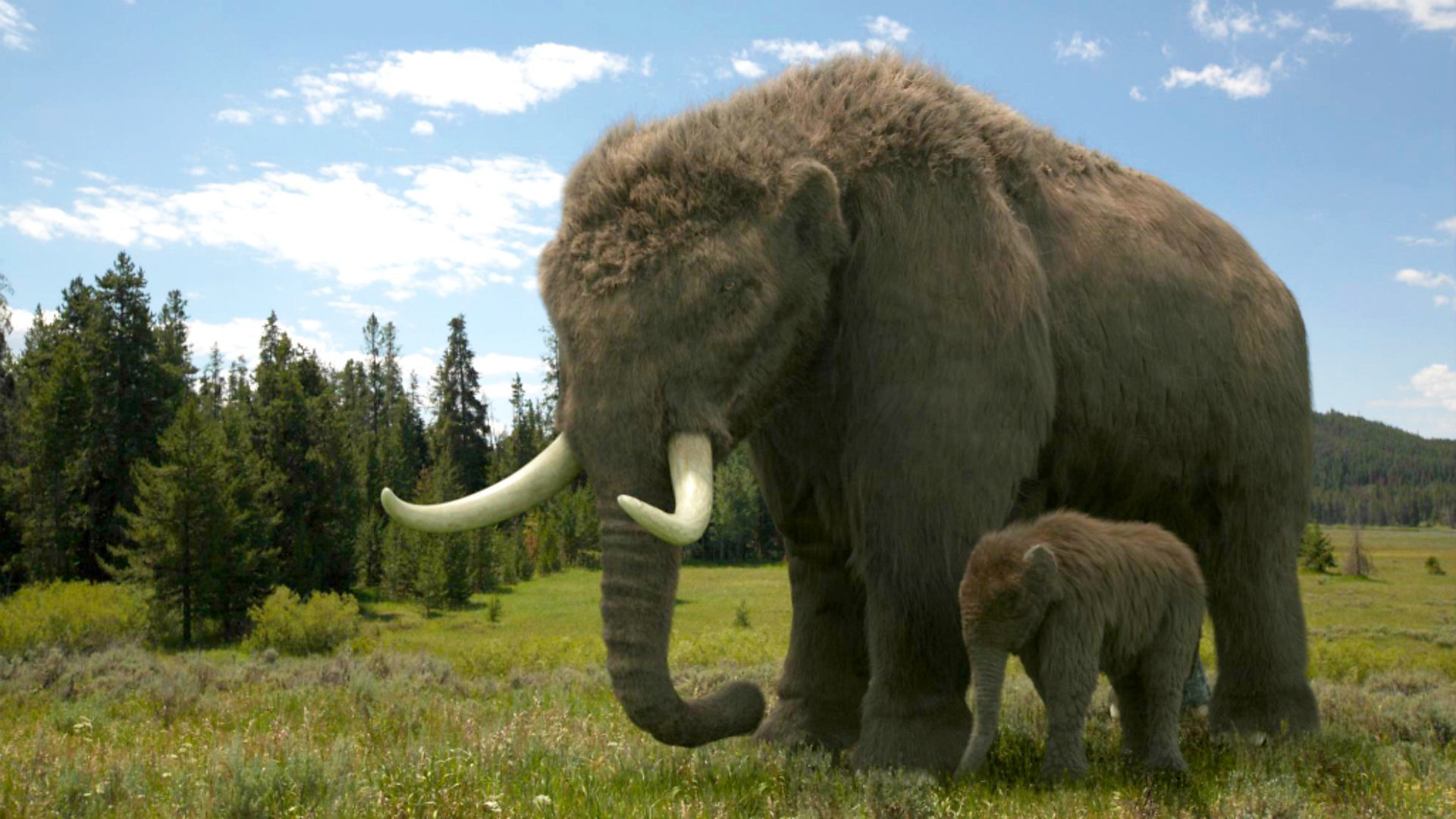 giant animals north america - HD1920×1080