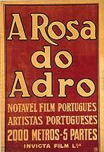 A Rosa do Adro